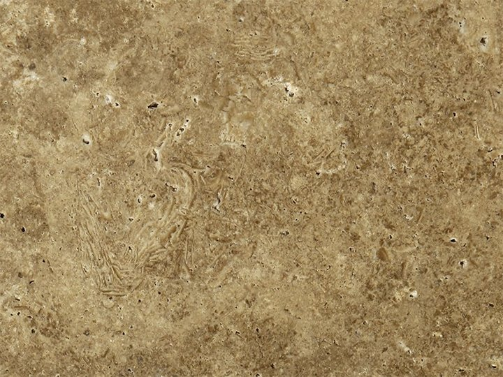 """Walnut Travertine - Travertine Walnutis a sedimentary stone, with a brown color, which varies from dark to hazelnut, with possible white ivory veining and several vacuoles, which are usually covered with opaque hazel-coloured calcite crystals, that make the material porous.  The material be used both indoor and outdoor. With specific finishes, it is usable even in places where the adoption of antislip surfaces, such as external pavements, swimming-pools and bathrooms, is necessary. <ul class=""""dati-generali"""">  <li class=""""field-carico_di_rottura_a_compressione""""><span class=""""label-det"""">Compression tensile strength</span><span class=""""value-det"""">1102 kg/cm²</span></li>  <li class=""""field-carico_di_rottura_unitario_a_flessione""""><span class=""""label-det"""">Unitary modulus of bending tensile strength</span><span class=""""value-det"""">137 Kg/cm²</span></li>  <li class=""""field-coefficiente_dilatazione_termica""""><span class=""""label-det"""">Heat expansion:</span><span class=""""value-det"""">0,0053 mm/m°C</span></li>  <li class=""""field-peso_per_unita_di_volume""""><span class=""""label-det"""">Mass by unit of volume</span><span class=""""value-det"""">2467 Kg/m³</span></li> </ul> 