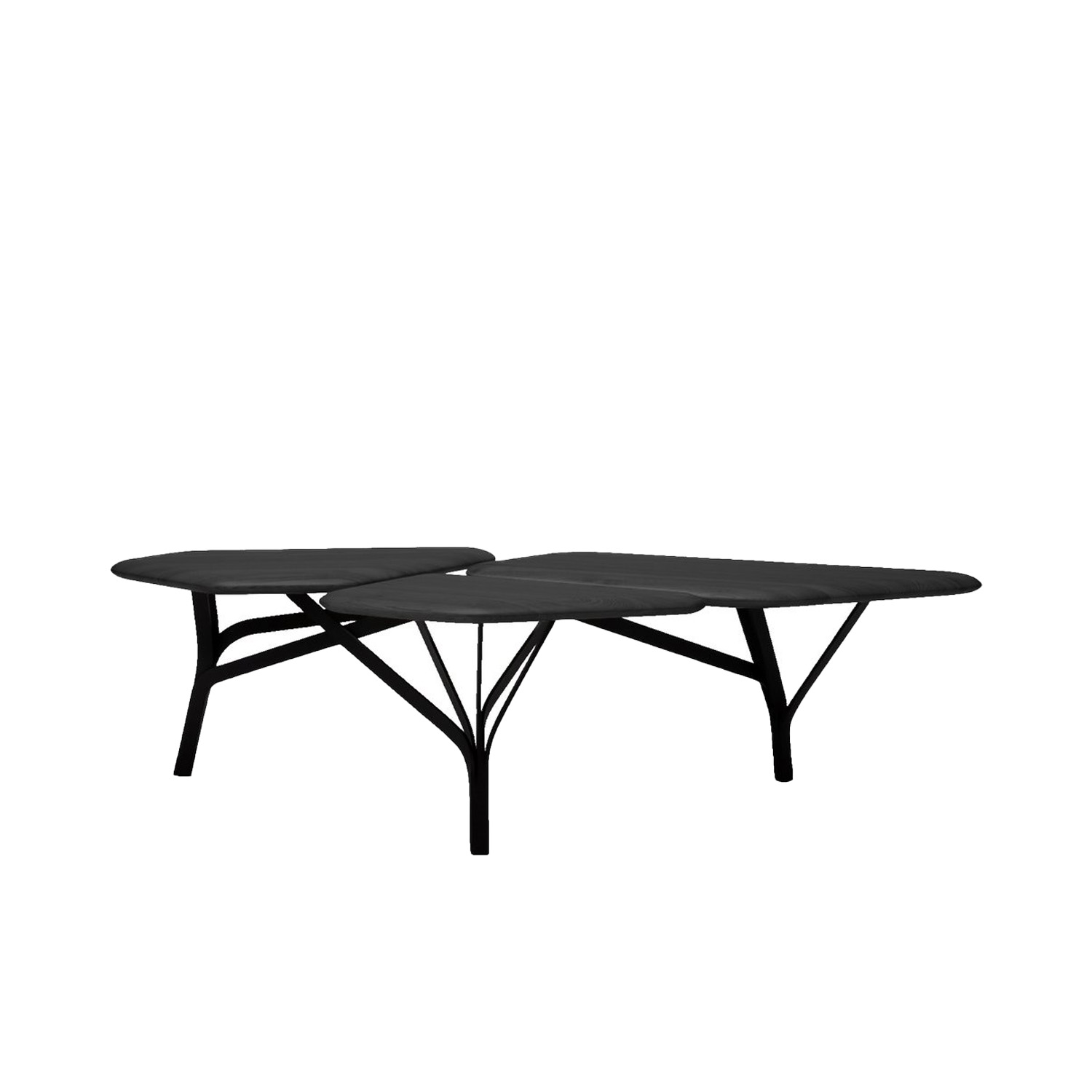 Borghese Coffee Table - The Borghese table, is inspired by the umbrella pines at the Villa Borghese gardens in Rome. The characteristic network of branches is translated as a graphic steel framework supporting a trio of solid wood tops  | Matter of Stuff