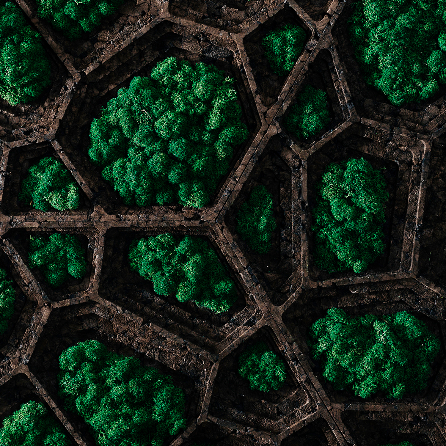 Corkvor Green Wall Panels - Corkvor is a generative pattern based on Voronoi diagram, partitioning of a plane into regions based on the distance to points in a specific subset of the plane. This principle creates a set of topologic voids,  a perfect hub for green lichens. The hexagonal shape allows combining each module in different ways, getting different variations and aesthetics.  GENCORK is a brand that explores the symbiosis between low-tech material and high-tech processes. The 100% natural and sustainable expanded cork agglomerate is transformed through generative design algorithms and advanced digital fabrication processes, expressing a new formal aesthetics. This creative and disruptive system not only optimizes cork's thermal and acoustic properties but also adds artistic value to traditional walls. | Matter of Stuff