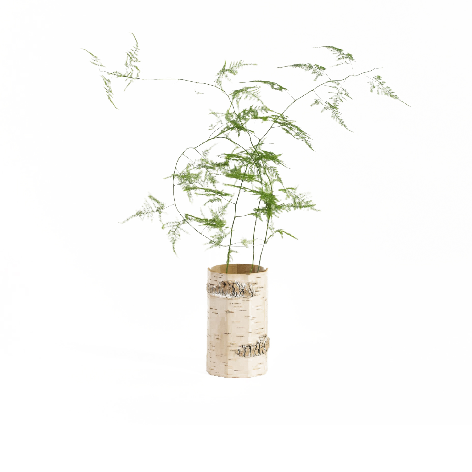 Tara Vase - In our new Tara vase your green favourites and beauties find a home in a familiar natural environment. The warm, bright surface of birch bark combined with the cool smoothness of glass envelope your flowers and augment them. Together they create a beautiful object for your interior. Whether housing branches of delicate spring blooms or a lush bouquet of dried flowers, this elegant birch bark Vase has a place on the table in every season.  The vase's glass insert can be easily removed for cleaning.  Height 22 cm | ø 10,5 cm  Birch bark, glass insert, pine wood (surface: water based wood stain, bees wax) | Matter of Stuff