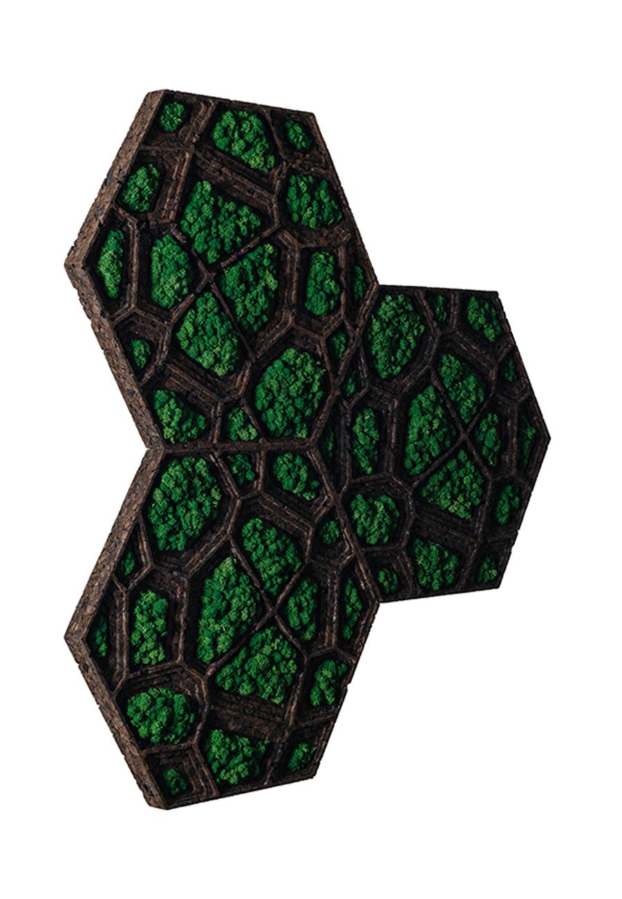 Corkvor Green Wall Panels