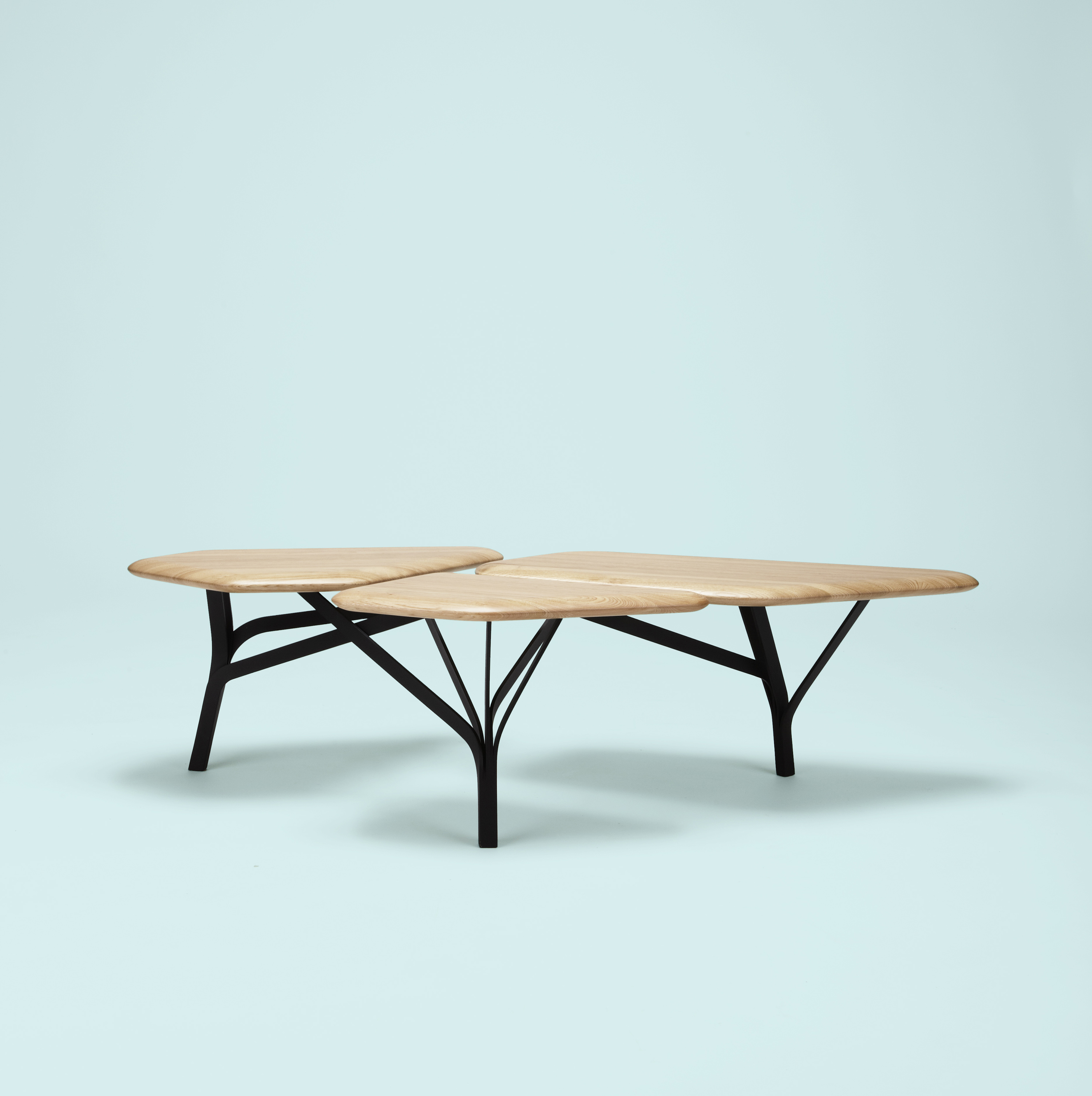 Borghese Coffee Table