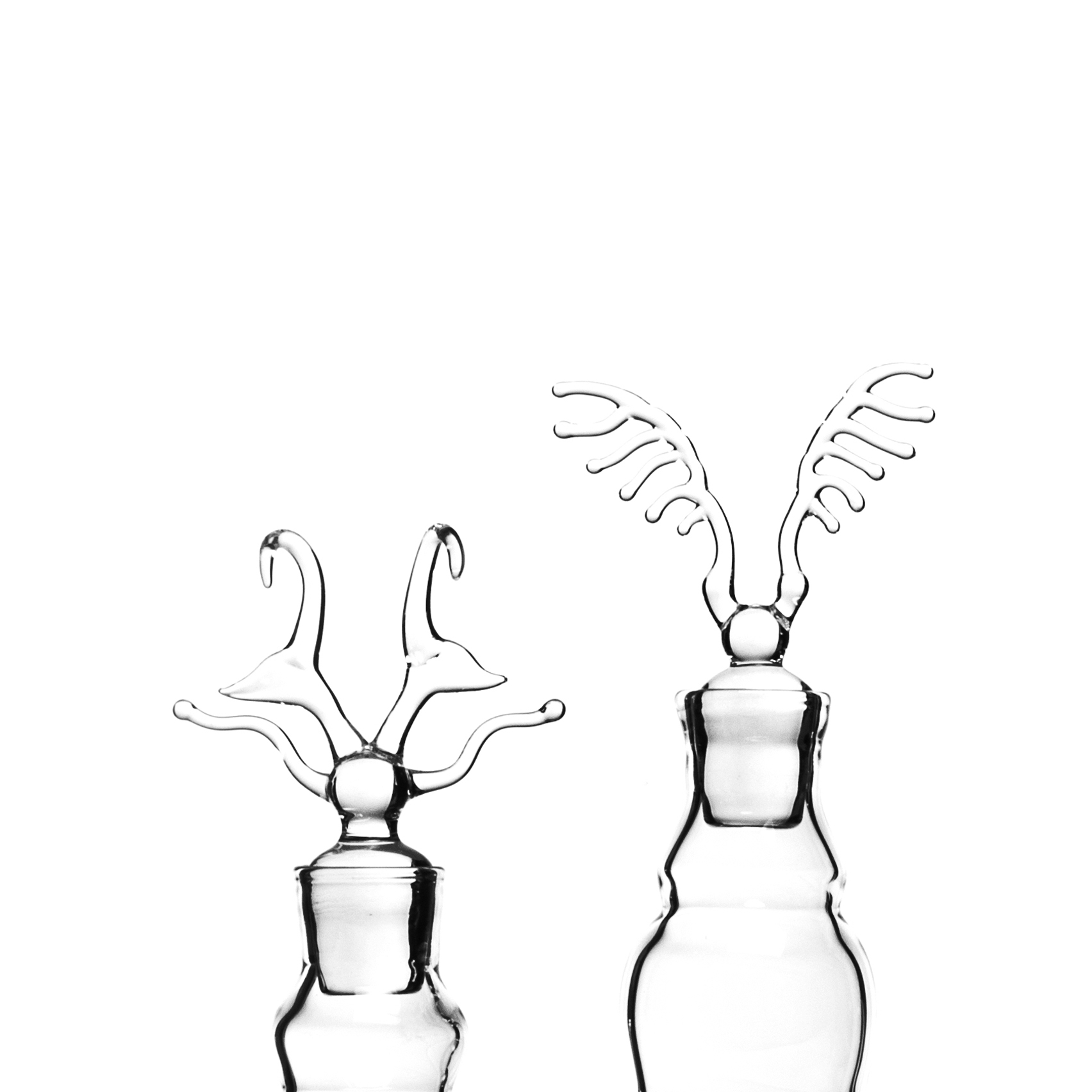 Olenecamptus fouqueti - Bottle - <p>The shape of insects exoskeleton was translated into bottles and vases. The design thus generated was used as a reference to reproduce the pieces in glass. The way sometimes archaeologists and historians do in order to better understand lost cultures.<br /> On the other hand a materic analogy occurs, in fact when insects molt their exoskeleton is soft at first so they can stretch it from within at maximum size. It then sclerotizes, becomes rigid, just like in glass blowing.</p>    Matter of Stuff