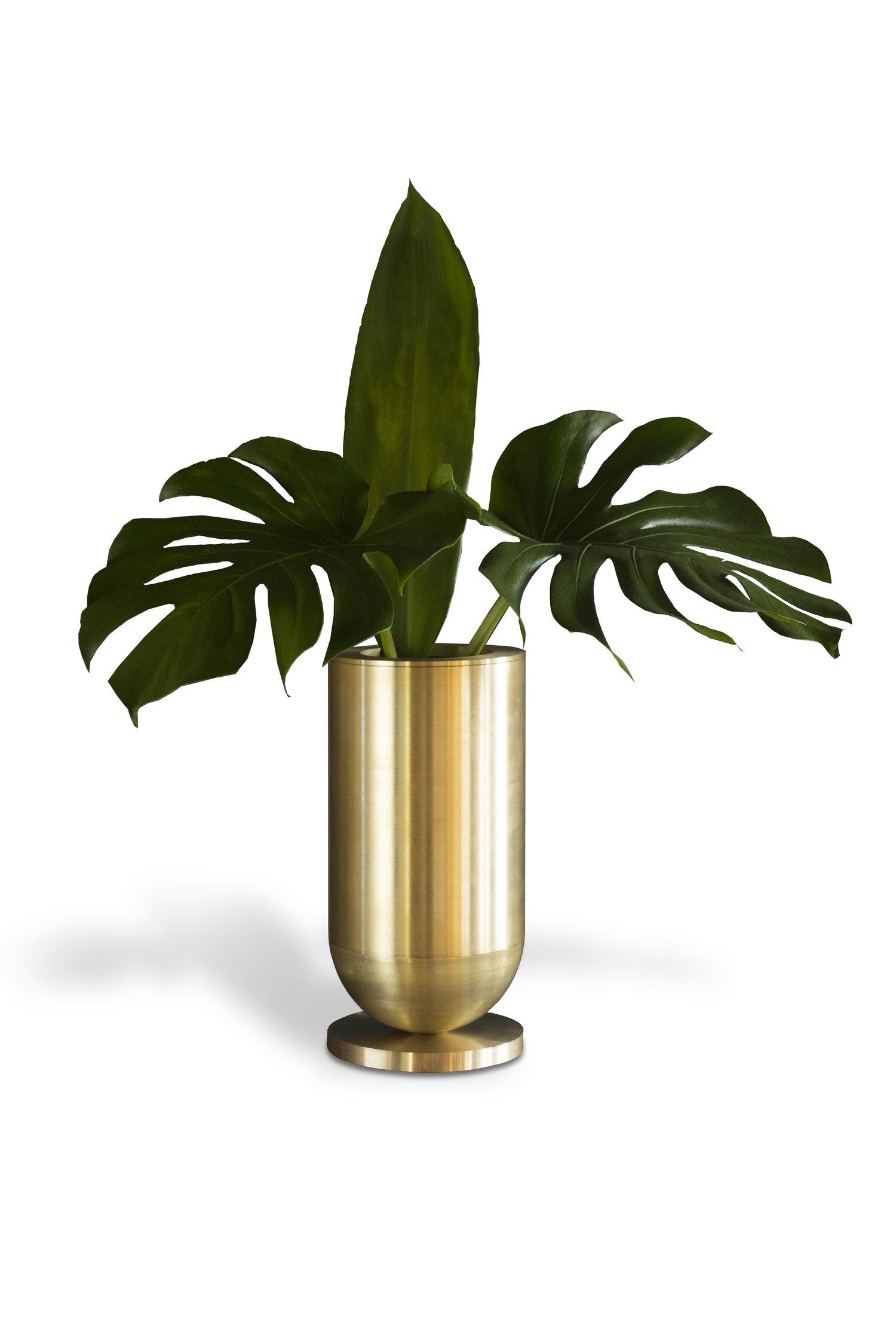 Cofete Vase